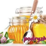 Лечение медом: апитерапия от хвори избавит