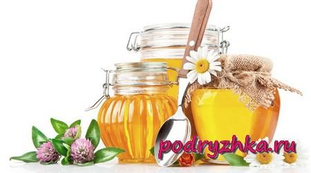 Апитерапия с помощью меда
