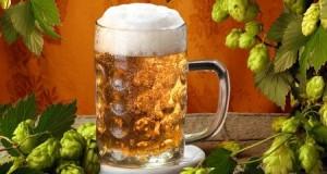 Пиво в косметологии: домашние рецепты красоты