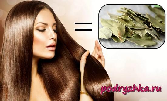 Лавровый лист для волос - рецепты масок, отваров и настоек