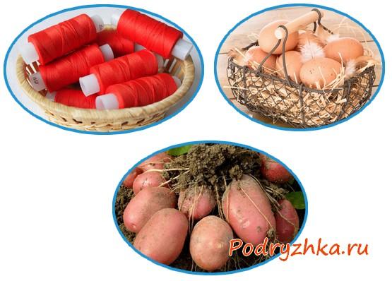 Красная нить, клубни картофеля и куриные яйца